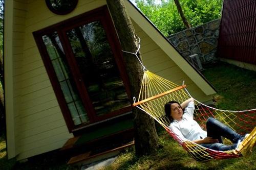adapazari-bungalov-evleri